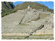 Photos of Machu Picchu: Terraces